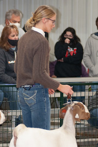 caney_valley_doe_show_20201212-18