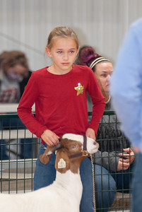 caney_valley_doe_show_20201212-11