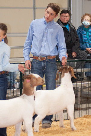 caney_valley_doe_show_20201212-41
