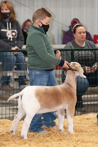 caney_valley_doe_show_20201212-9