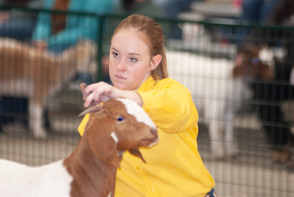 caney_valley_doe_show_20201212-45