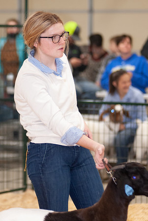 caney_valley_doe_show_20201212-31