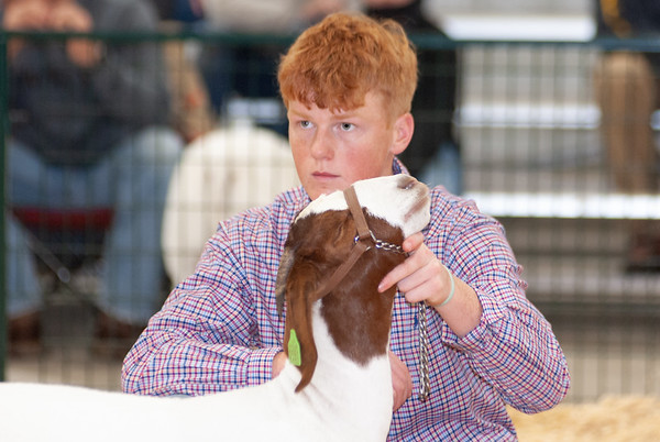 caney_valley_doe_show_20201212-40