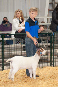 caney_valley_doe_show_20201212-5