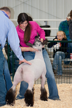 caney_valley_sheep_show_20201212-7
