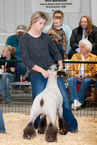 caney_valley_sheep_show_20201212-5