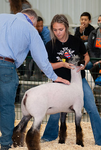 caney_valley_sheep_show_20201212-8