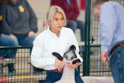 caney_valley_sheep_show_20201212-14