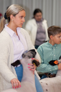 caney_valley_sheep_show_20201212-18