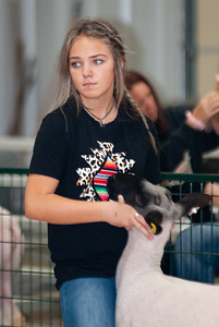 caney_valley_sheep_show_20201212-10