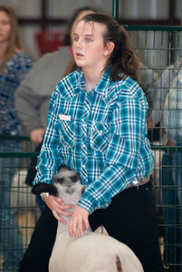 caney_valley_sheep_show_20201212-11