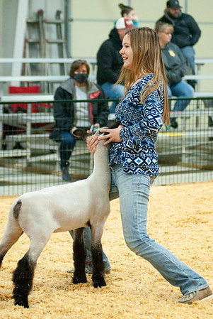 caney_valley_sheep_show_20201212-3