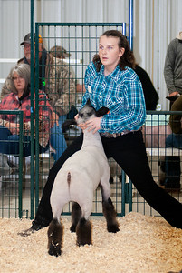 caney_valley_sheep_show_20201212-6