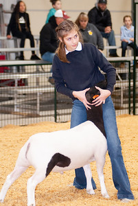 caney_valley_sheep_show_20201212-2