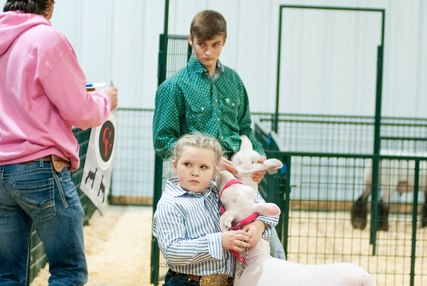 caney_valley_sheep_show_20201212-1