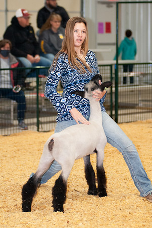 caney_valley_sheep_show_20201212-4