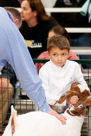caney_valley_wether_show_20201212-17