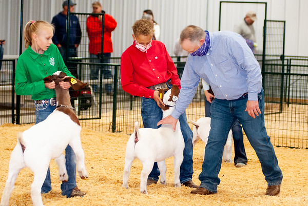 caney_valley_wether_show_20201212-22
