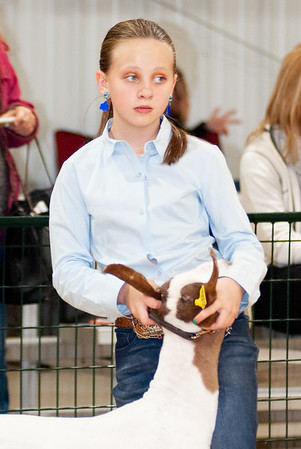 caney_valley_wether_show_20201212-29