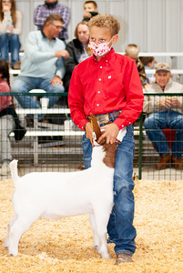 caney_valley_wether_show_20201212-13