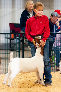 caney_valley_wether_show_20201212-11