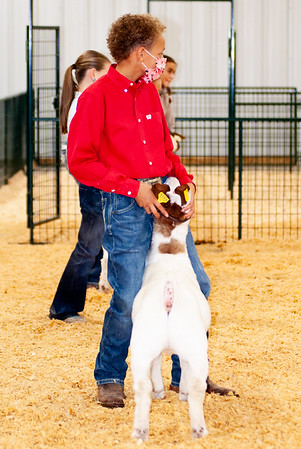 caney_valley_wether_show_20201212-32