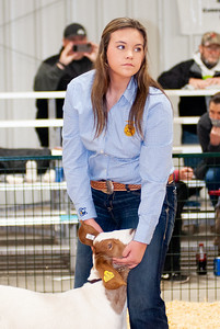 caney_valley_wether_show_20201212-16