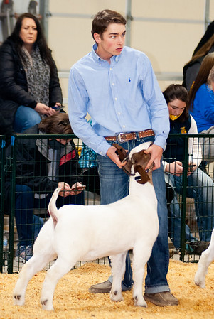 caney_valley_wether_show_20201212-36