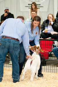 caney_valley_wether_show_20201212-5