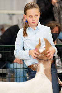 caney_valley_wether_show_20201212-42