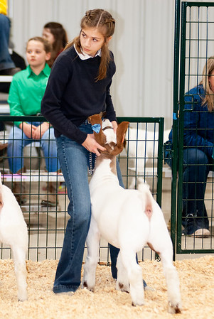 caney_valley_wether_show_20201212-35