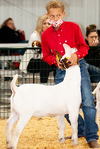caney_valley_wether_show_20201212-44