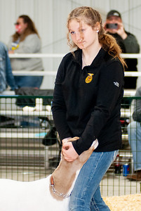 caney_valley_wether_show_20201212-15