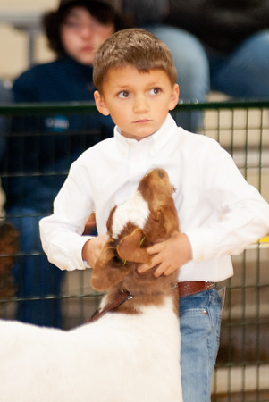 caney_valley_wether_show_20201212-19