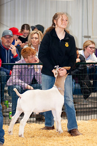 caney_valley_wether_show_20201212-12