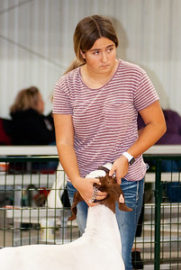 caney_valley_wether_show_20201212-38