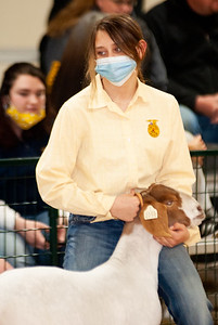 caney_valley_wether_show_20201212-43