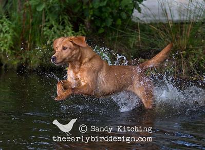 Andy Biggar Photo Masterclass Sept 2014