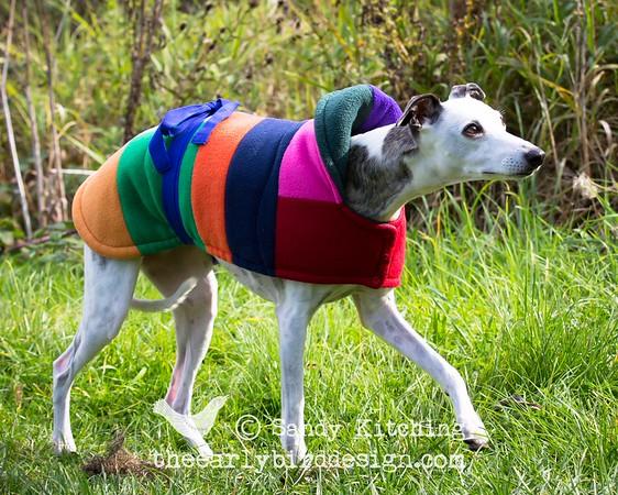 Eco Hound Dog Coats Sept 2014