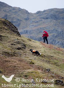 Skye & John searching fells