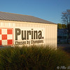 Purina Farms September 2006