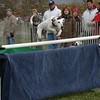 GVH Races 2006