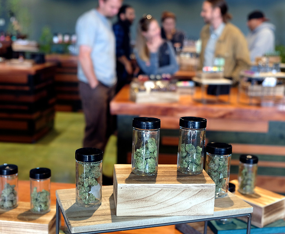 . Treehouse marijuana dispensary opened their new Soquel Drive showroom on Monday. (Shmuel Thaler -- Santa Cruz Sentinel)