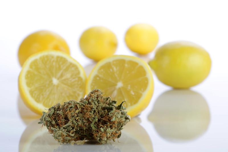 STB BR4A1001 Lemon Sour Diesel copy