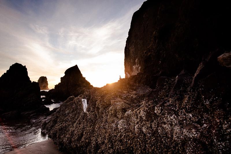 Haystack Rock, low tide, Cannon Beach