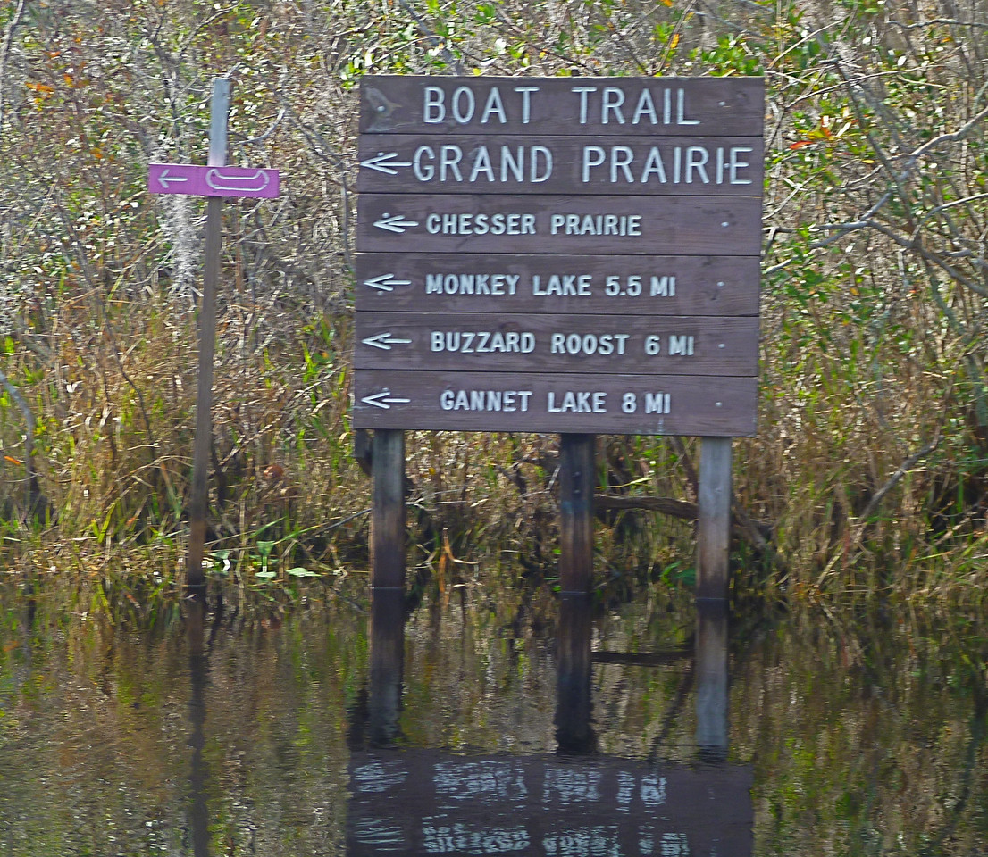"""After about the 2 mile mark, we turn into one of the smaller channels, open only to canoes. Route finding is not a problem. We are following the """"pink route"""" to Monkey Lake."""