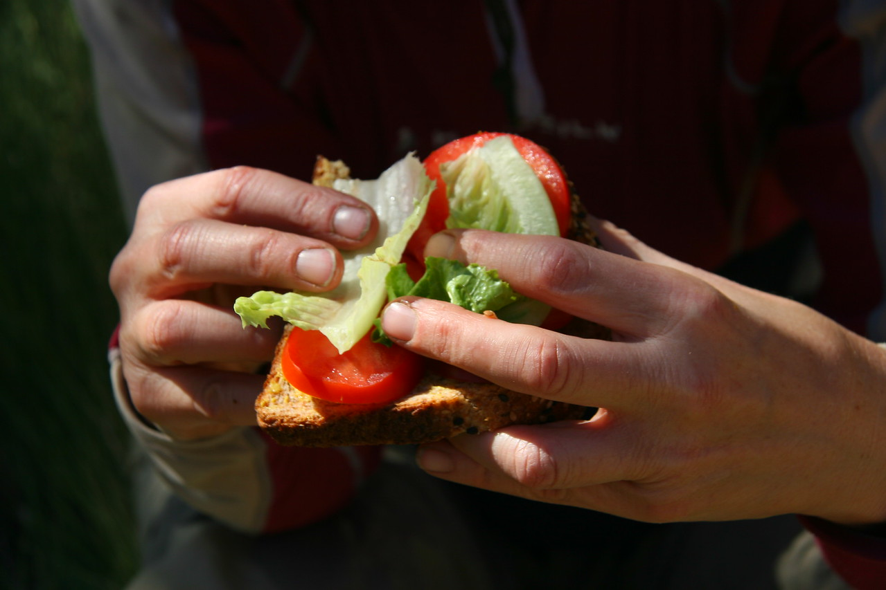 Rena's usual lunch was a tomato, lettuce, and cheese sandwich.