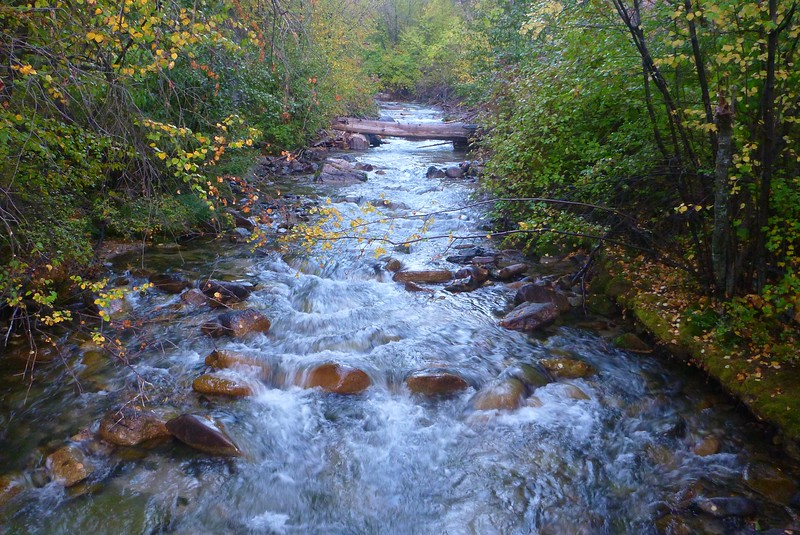 Wilson Creek Camp, Mile 72.5. A side stream.