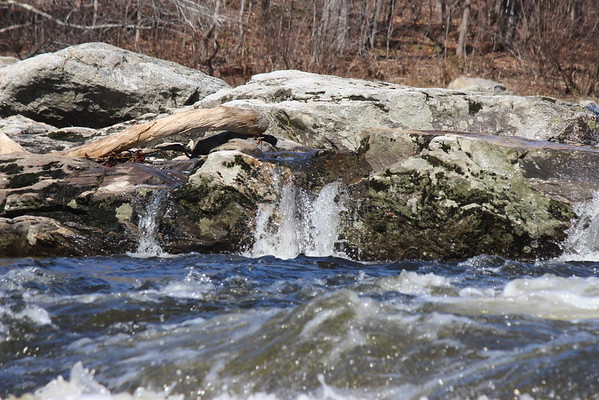 2016 Marsh Stream Canoe Race  - Camera Two