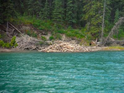 Yukon River Quest Race Training